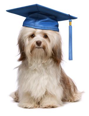 Graduate of CLASS